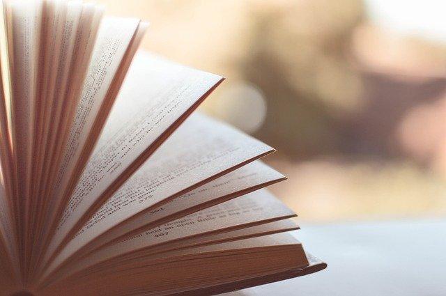 como ler rápido